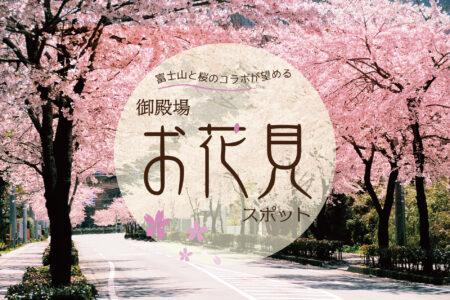 富士山と桜のコラボが望める、御殿場お花見スポット ※令和3年御殿場桜まつりは中止です